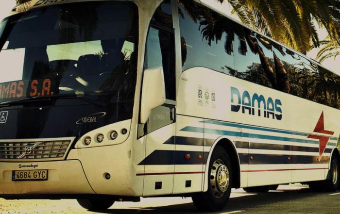 damas-1200x541
